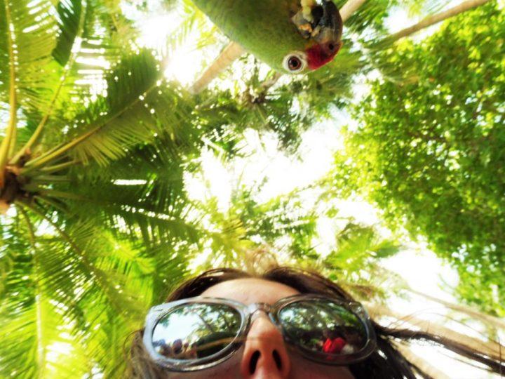 Girls with bird on Tortuga Island Costa Rica