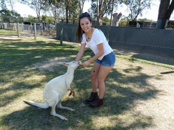 7 Travel lessons I learned from a trip to the zoo