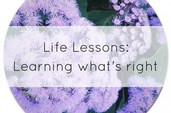 Life lessons:  learning what's right