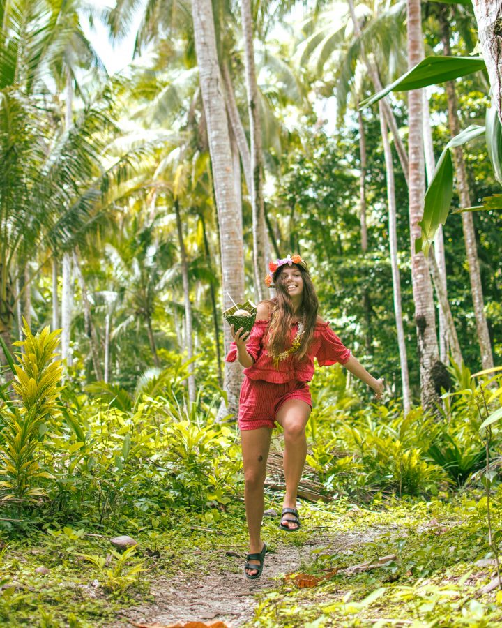 Rendova Island Tituru Eco Lodge Solomon Islands palm trees in jungle
