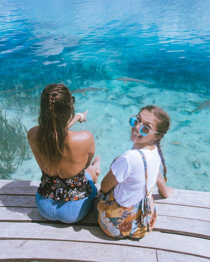 Solomon Islands reef sharks best beaches in the world
