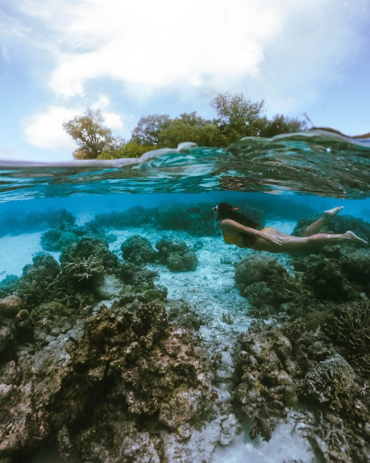 Go Pro dome Kennedy Island snorkelling Solomon Islands