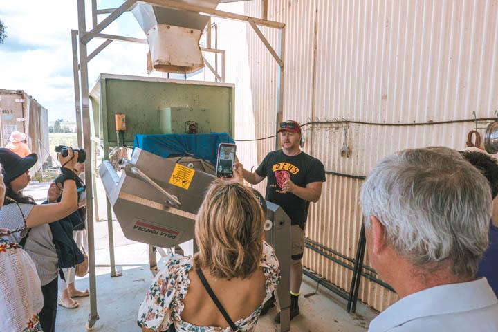 Hunter Valley Wine Tour Shore Excursion explorer dream dream cruises
